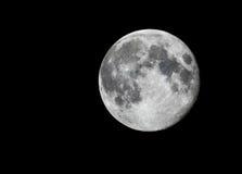 Fullmåne i svart sky Royaltyfria Foton