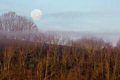 Fullmåne med dimma ovanför den skogsbevuxna kullen royaltyfri fotografi