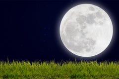 Fullmåne med stjärnor och fältet av den gröna kullen på mörkerhimmel Arkivfoto
