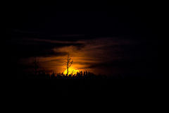 Fullmåne närmast höstdagjämningenresning Royaltyfri Foto