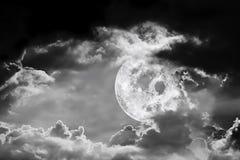 Fullmåne och den mörka natten Fotografering för Bildbyråer