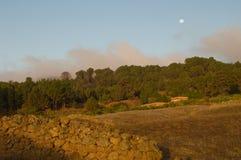 Fullmåne på gryning arkivfoton
