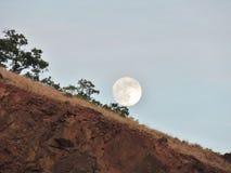 Fullmåne som stiger över en stenig klippa Royaltyfria Bilder
