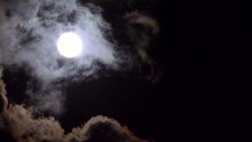 Fullmånelöneförhöjningar i moln på himmel i natten, siktsmåneljus, afton Timelapse lager videofilmer