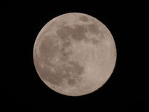 Fullmoon Stock Photo