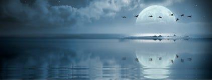Fullmoon sobre o oceano Imagens de Stock