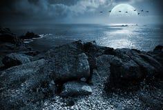 Fullmoon sopra l'oceano immagini stock libere da diritti