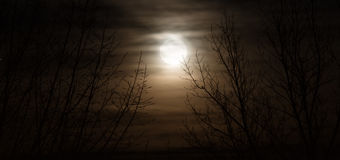 Fullmoon Royalty Free Stock Image