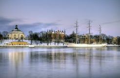 Fullrigger bonito em um dia de inverno. Fotos de Stock Royalty Free