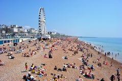 Fullsatta Brighton Beach med det Brighton hjulet Arkivfoton