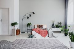 Fullt av moderiktigt sovrum med bekväm konungformatsäng, den vita träsängsidotabellen och planta royaltyfria bilder
