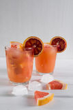 Fullt exponeringsglas av grapefruktfruktsaft och exponeringsglas av skivad frukt med is Arkivbilder