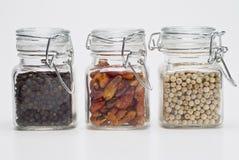 fullt exponeringsglas skakar kryddor arkivfoto