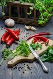 Fullvuxet hemmastatt för nya kryddor och för örtar Royaltyfri Foto