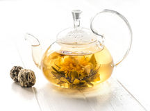 Fully brewed blossoming tea in a pot. Fully brewed blossoming tea, chinese rare and delicious kind of tea in a pot Stock Photo