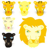 Fully editable vector felines ready to use Royalty Free Stock Image