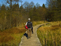 Fully Equipped Nature Photographer. Walking down the wooden path in National Park Plitvice Lakes, Croatia stock images