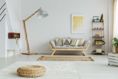Fully furnished room. Bright spacious fully furnished room with plants and decorations Stock Photos