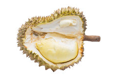 Fully ripe durian fruit isolated. Ready  to eat. On a white background ,With  clipping Path Stock Images