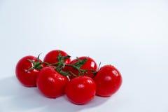 Fully ripened tomatos on a white bcakground. Fully ripened juciy tomatos on a white bcakground Royalty Free Stock Photo