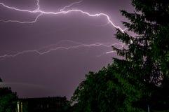 Fulmine nel cielo ed in un pino fotografie stock