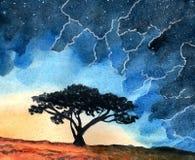 Fulmine nel cielo, nelle stelle e nell'albero fotografie stock libere da diritti