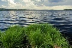 Fulminez le paysage avec le lac de forêt avant pluie de tempête Photos stock