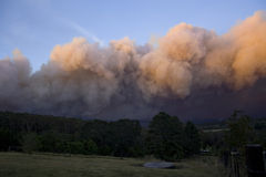 Fumée Berambing du feu de Bush Photo stock