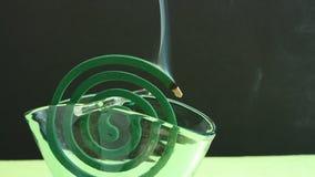 Fumée d'encens de bobine de moustique Image stock