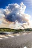 Fumée d'incendie de Forrest Photos stock