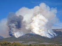 Fumée d'un feu de forêt images stock