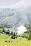 Fumée dans les Alpes de l'Autriche Photographie stock libre de droits