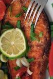 Fumée de salamon de pieu Photos stock