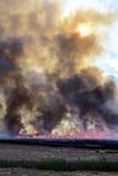 Fumée et cendres du feu Photo libre de droits