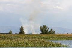 Fumée par le lac Photo stock