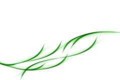 Fumée verte sur le blanc Photos stock