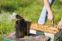 Fumador de la abeja con el Apiarist Working On Farm Imagenes de archivo