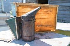 Fumador de la abeja que fuma en la apicultura estacional de las abejas de la miel del copyspace del colmenar que cultiva la produ Imágenes de archivo libres de regalías
