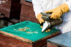 Fumador de la apicultura Fotos de archivo libres de regalías