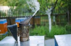 Fumador de la apicultura en la colmena de la abeja Conseguir la miel de la colmena Imagenes de archivo