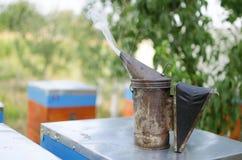 Fumador de la apicultura en la colmena de la abeja Conseguir la miel de la colmena Fotografía de archivo libre de regalías