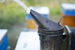 Fumador de la apicultura en la colmena de la abeja Conseguir la miel de la colmena Imagen de archivo libre de regalías