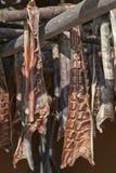 Fumando y secando salmones foto de archivo
