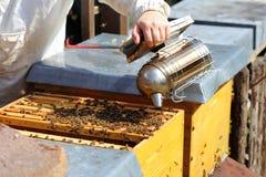 Fumar una colmena de la abeja Imagenes de archivo