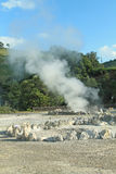 Field of fumaroles Stock Photos