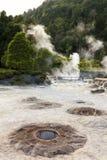 Fumaroles and cooking holes at Furnas lake Stock Images