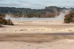 Fumaroles on lake Rotorua shore Royalty Free Stock Photos