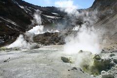 fumarols喷泉 库存图片