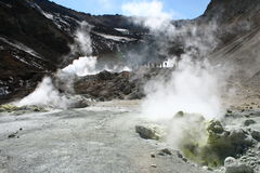 Fumarols and geysers. Big canyon on Mutnovsky volcano Stock Image