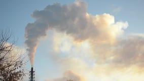 Fumée blanche des cheminées d'usine se levant dans le ciel bleu, les oiseaux volant en ciel sur un fond de ciel et la fumée, puis banque de vidéos